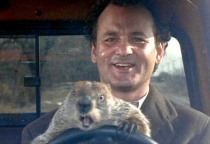 Picture of Bill Murray and a groundhog driving a car. From the film Groundhog Day.