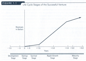 Graph showing revenue relative to the life cycle stages of a successful business venture