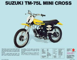 Picture of a Suzuki motorcycle